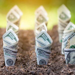 Ripps für den Finanzierungsplan zur Existenzgründung
