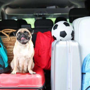 Die Reisepackliste hilft an alles zu denken